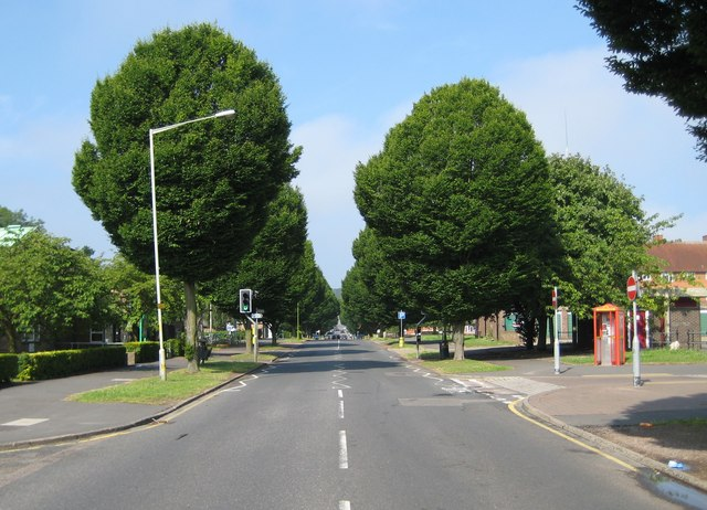 Oxhey Drive | © Copyright Nigel Cox and licensed for reuse under this Creative Commons Licence.