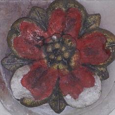 Rose detail   Llinos Thomas