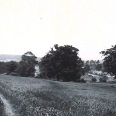 'Five Fields' to style at top of Carpenders Avenue 1940's | Arthur Hall