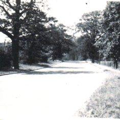 Bend past 'Tudor House' Oxhey Lane 1940's | Arthur Hall
