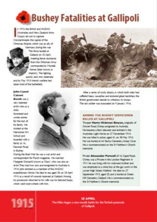 Fatalities at Gallipoli   Bushey Museum