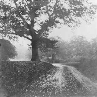 Green Lane - Oxhey  1900 - 1910 | Photograph Courtesy of Watford Library-